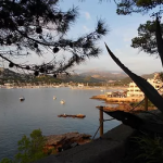Living Mallorca 3