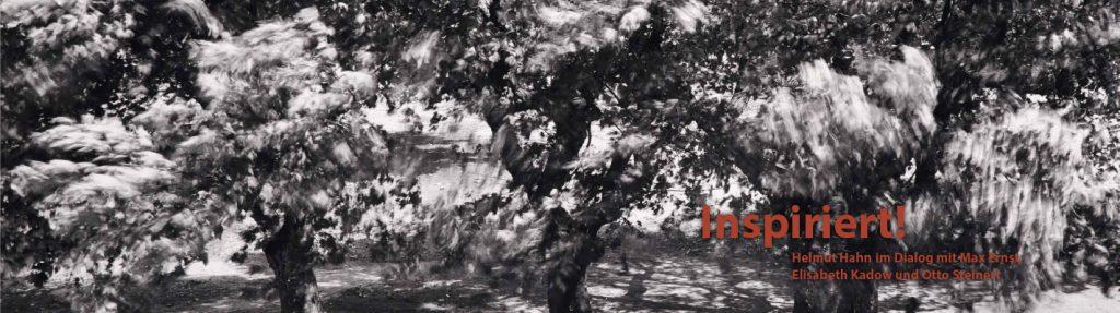 Inspiriert! Helmut Hahn im Dialog mit Max Ernst, Elisabeth Kadow und Otto Steinert