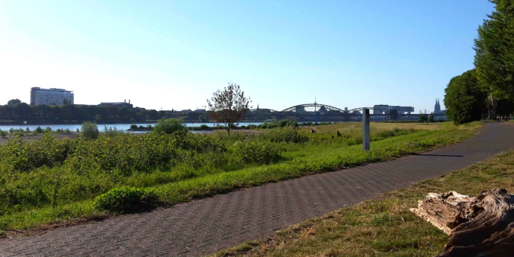 Lebensart24 Blog – Ruhe und Idyll auf den Poller Wiesen