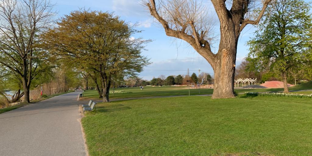 Lebensart24 Blog – Es grünt im Rheinpark